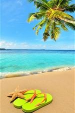 Aperçu iPhone fond d'écranPalmier, plage, mer, vagues, étoile de mer, flop flop, ciel bleu