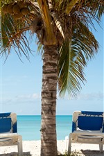 Preview iPhone wallpaper Palm trees, chaise, sea, sunshine, shadow