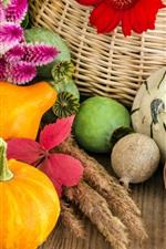 Preview iPhone wallpaper Pumpkin, vegetables, flowers, basket