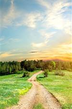 Aperçu iPhone fond d'écranRoute, arbres, herbe, soleil, ciel, nuages, nature