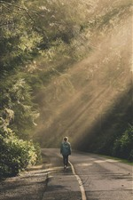 Preview iPhone wallpaper Road, trees, people, sun rays