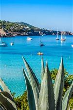 Espanha, mar azul, costa, iates, barcos