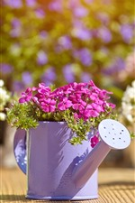 Preview iPhone wallpaper Watering can, pink and white flowers, flowering, sunshine