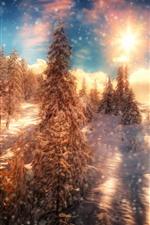 iPhone壁紙のプレビュー 冬、木、雪、雪、夕焼け