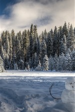 Preview iPhone wallpaper Yosemite National Park, snowman, snow, winter, trees, shadow