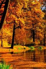 Aperçu iPhone fond d'écranAutomne, arbres, étang, feuilles rouges, soleil