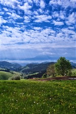 Preview iPhone wallpaper Countryside, mountains, trees, flowers, blue sky, clouds