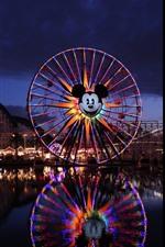 Preview iPhone wallpaper Disneyland Resort, night, lights, ferris wheel, lake