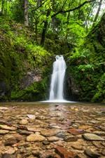 Aperçu iPhone fond d'écranAllemagne, cascade, pierres, forêt noire