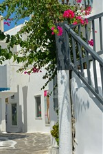 Preview iPhone wallpaper Greece, flowers, ladder, house, sunshine