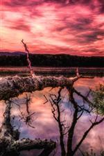 Lago, árvores, montanhas, céu vermelho, nuvens, pôr do sol