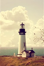 Preview iPhone wallpaper Lighthouse, house, sea, coast, birds