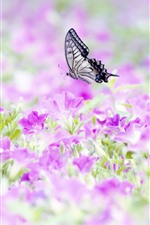 Preview iPhone wallpaper Many pink flowers, butterfly, insect