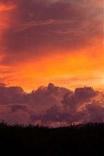Aperçu iPhone fond d'écranMaui, herbe, ciel rouge, nuages, coucher de soleil