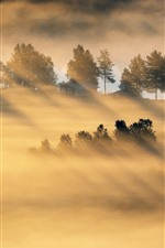 Preview iPhone wallpaper Morning, countryside, sun rays, fog, house, fields