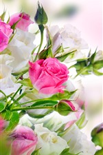 Preview iPhone wallpaper Pink and white roses, bouquet, glare