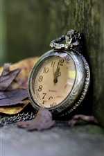 Preview iPhone wallpaper Pocket watch, leaves, corner