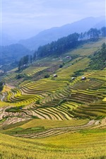 Preview iPhone wallpaper Rice terrace, fields, mountains, countryside, beautiful scenery