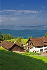 Preview iPhone wallpaper Switzerland, Gersau, Lake Lucerne, slope, houses, green