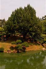 Preview iPhone wallpaper Takamatsu, Japan, park, trees, pond