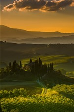 Preview iPhone wallpaper Tuscany, Italy, village, countryside, fields, trees, green
