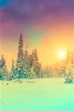 Preview iPhone wallpaper Winter, trees, snow, sunset, clouds, fog