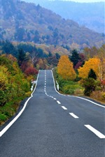 Preview iPhone wallpaper Autumn, trees, mountain, road
