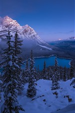 Preview iPhone wallpaper Banff National Park, Alberta, Canada, lake, snow, trees, mountains, winter