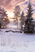 Preview iPhone wallpaper Beautiful winter, trees, snow, sunset, sky, clouds