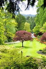 Preview iPhone wallpaper Canada, Butchart Gardens, trees, green