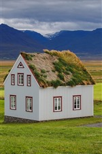 Iceland, house, mountains, grass, fields
