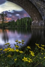 Preview iPhone wallpaper Norway, bridge, river, trees, yellow flowers, lights, dusk