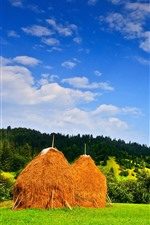 Preview iPhone wallpaper Romania, haystack, trees, field, hills, blue sky, clouds