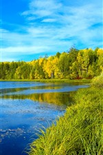 Preview iPhone wallpaper Siberia, river, trees, green, forest, blue sky