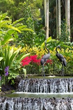 Preview iPhone wallpaper Singapore, park, waterfall, bird statue, trees, leaves
