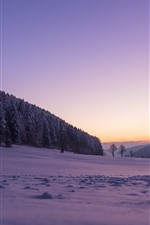 Preview iPhone wallpaper Switzerland, snow, winter, trees, forest, purple