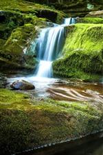 Preview iPhone wallpaper Tompkins Falls, waterfall, green moss, rocks, New York
