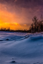 Preview iPhone wallpaper Winter, snow, trees, slope, sunset, dusk