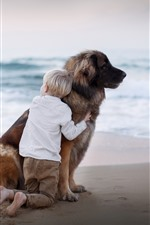 Preview iPhone wallpaper Child boy, dog, beach, sea