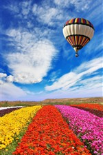 Preview iPhone wallpaper Colorful flowers field, hot air balloon flight in sky, clouds