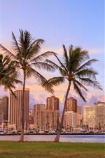 iPhone обои Гавайи, пальмы, небоскребы, город, залив, сумерки