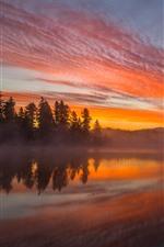 Lago, árvores, nevoeiro, pôr do sol, nebuloso