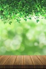 Viele grüne Blätter, leichte Kreise, Holz