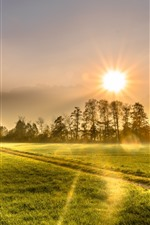 Preview iPhone wallpaper Morning, field, trees, house, green, sunshine