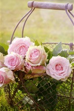 Preview iPhone wallpaper Pink roses, flowers, basket, grass