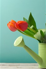 Красные тюльпаны, чайник, зеленый