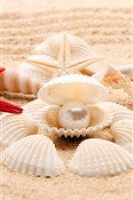 Preview iPhone wallpaper Seashell, starfish, beach, pearl