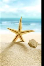 Aperçu iPhone fond d'écranStarfish, plage, coquille, mer, tropical