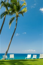 Preview iPhone wallpaper Tropical, sea, palm trees, chairs, meadow