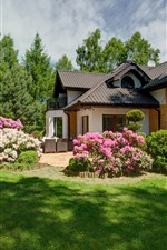Preview iPhone wallpaper Villa, garden, meadow, pink flowers, trees, green